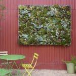 Giardino Verticale Piante Grasse